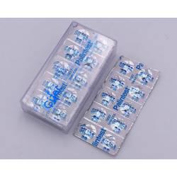 Pilule Silice PR (100 P) réf 31553330